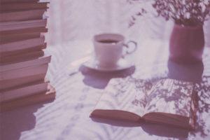 reap-bible-study-method