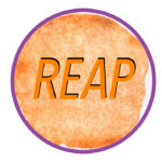 REAP method the rewards of daily Bible study