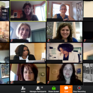 example screen of a zoom online meeting